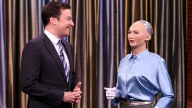 Photo of مليون دولار تكلفة التأمين على الروبوت صوفيا خلال زيارتها إلى مصر