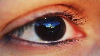 Photo of لماذا تكون حاسة البصر لدينا أقوى عند الفجر والغسق؟