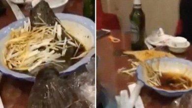 Photo of بالفيديو… سمكة تعود للحياة بعد طهيها بمطعم صيني