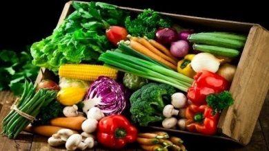 Photo of هل النظام الغذائي النباتي صحي بالفعل؟