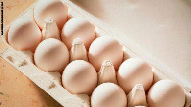 Photo of دراسة جديدة: بيضة في اليوم تبعد عنك أمراض القلب