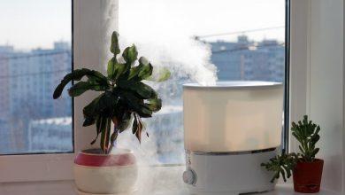 Photo of السموم داخل منزلك.. إليك 5 طرق بسيطة لمكافحتها