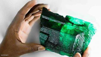 """Photo of عامل يعثر على """"حجر هائل"""" من الزمرد.. والقيمة لا يمكن تقديرها"""