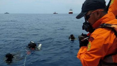 Photo of الكشف عن مفاجأة مزلزلة بشأن الطائرة الإندونيسية المنكوبة