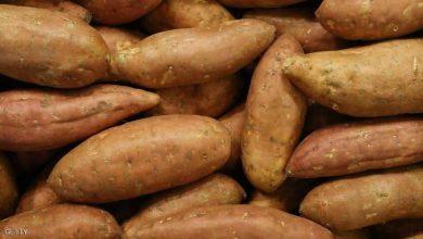 Photo of البطاطا الحلوة.. كيف تفيد مرضى السكري؟