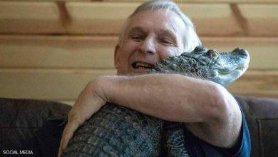 Photo of تمساح ينقذ صاحبه من الاكتئاب