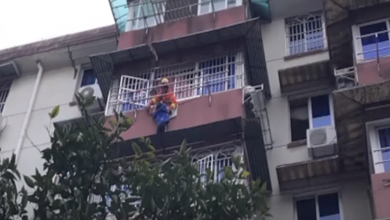 Photo of بالفيديو… فتاة تمسك شقيقها المعلق في النافذة 20 دقيقة وتنقذ حياته