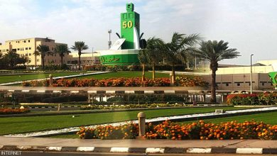 Photo of بالترتيب.. أفضل 5 جامعات في العالم العربي