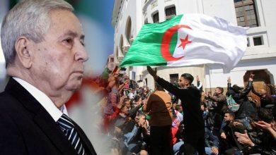 Photo of آلاف المحتجين في الجزائر يرفضون تعيين بن صالح رئيسا مؤقتا