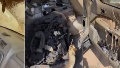 Photo of انف، ـجار بطارية هاتف يتسبب باحترl ق سيارة أمير سعودي .. فاحذروا ! ( فيديو )